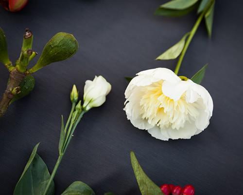 Weiße Blumen und Grünzeug für Blumensträuße auf grauem Hintergrund