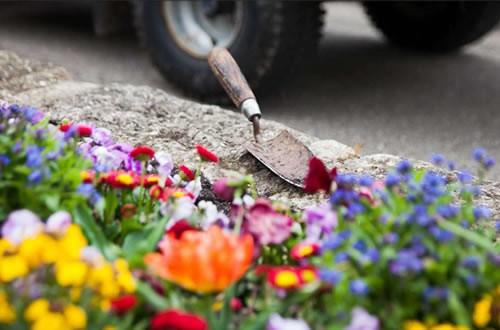 Grabpflege mit bunten Blumen